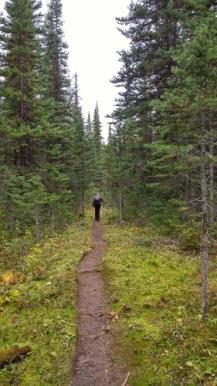 the-trail-281x500