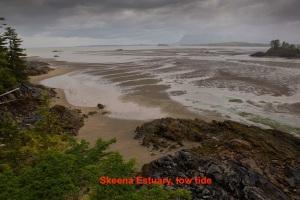 skeena-estuary