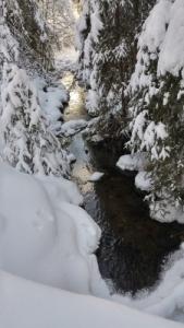 small-creek-225x400