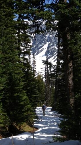 lynn-on-the-trail-338x600
